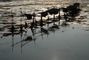 My Venice - low tide in lagoon